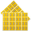 Pendaflex Colour Coded Label Letter E